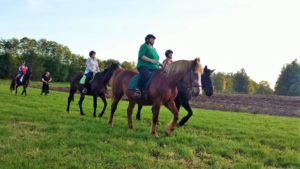 Grene Wode Riders Meadow Trail