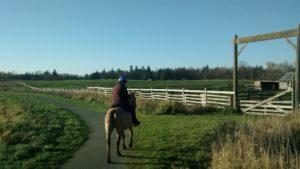 Gunny Jenn Trail